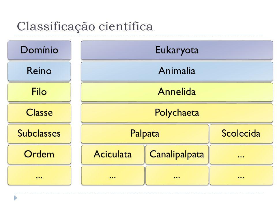 Classificação científica
