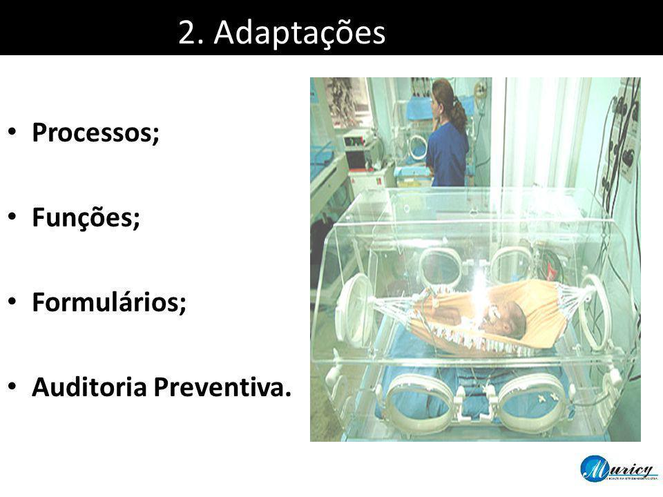 2. Adaptações Processos; Funções; Formulários; Auditoria Preventiva.