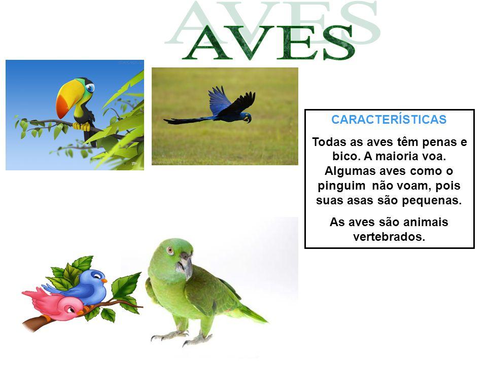 As aves são animais vertebrados.