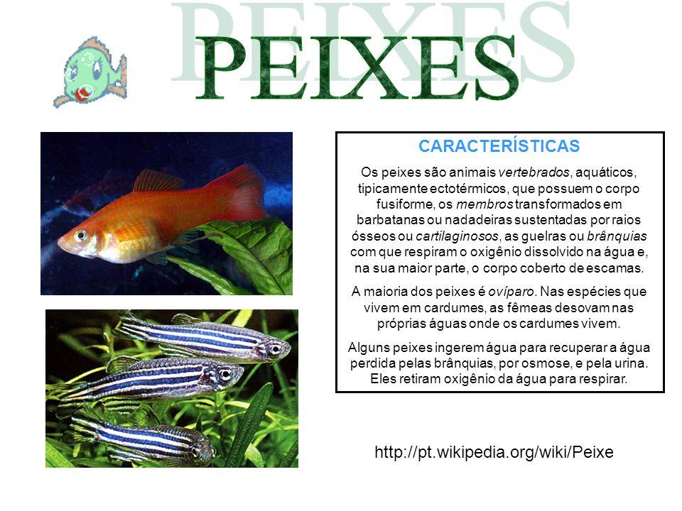 PEIXES CARACTERÍSTICAS http://pt.wikipedia.org/wiki/Peixe