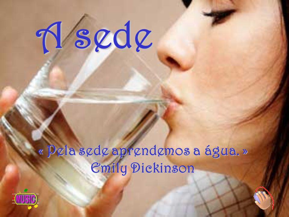 « Pela sede aprendemos a água. » Emily Dickinson