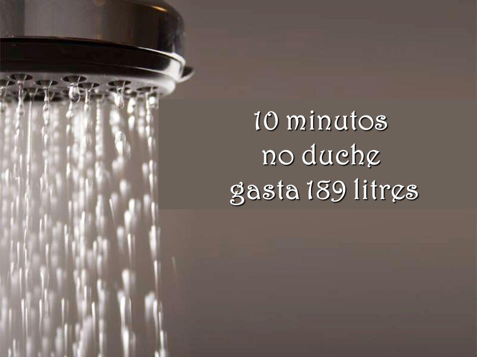 10 minutos no duche gasta 189 litres