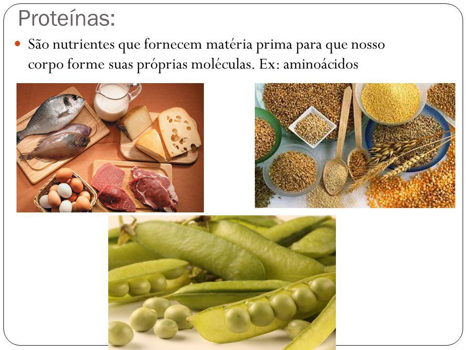 Proteínas: São nutrientes que fornecem matéria prima para que nosso corpo forme suas próprias moléculas.