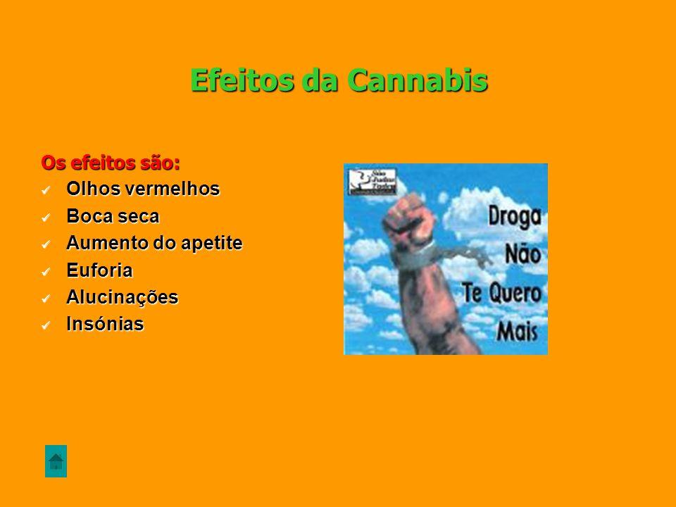 Efeitos da Cannabis Os efeitos são: Olhos vermelhos Boca seca