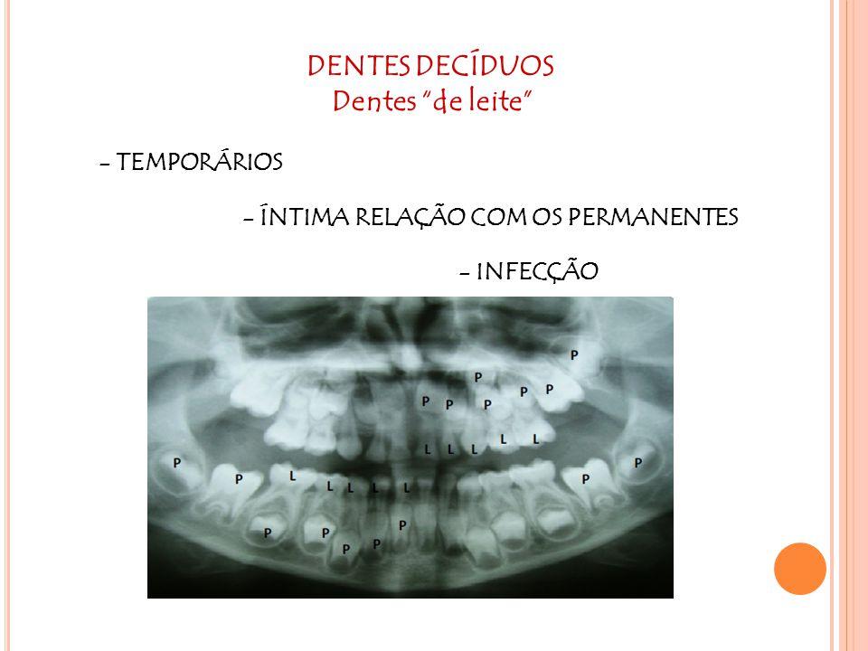 DENTES DECÍDUOS Dentes de leite
