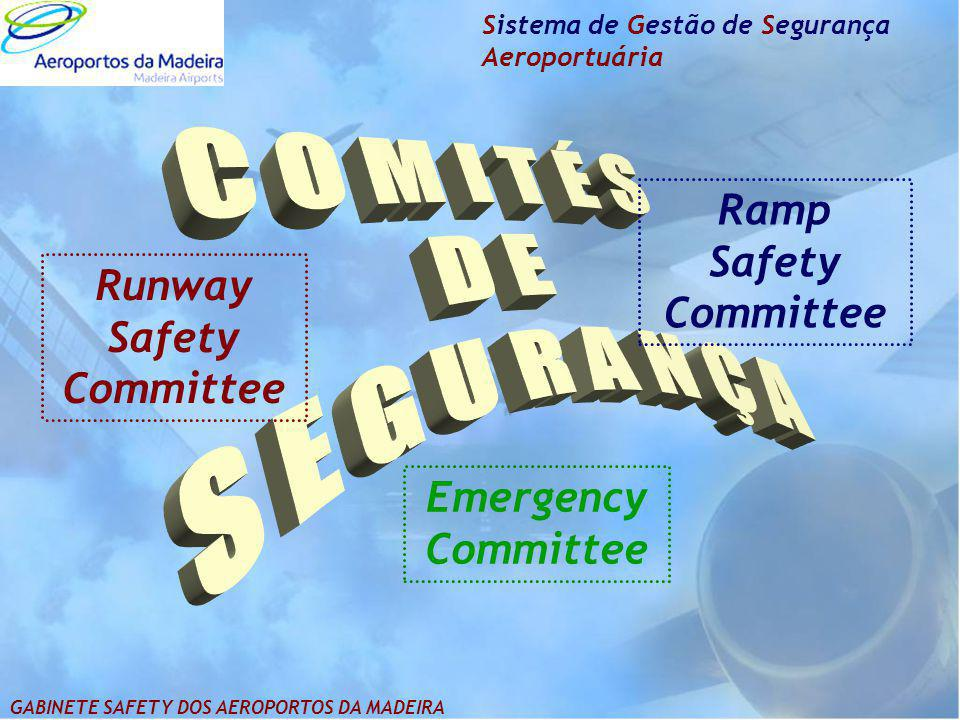 Runway Safety Committee