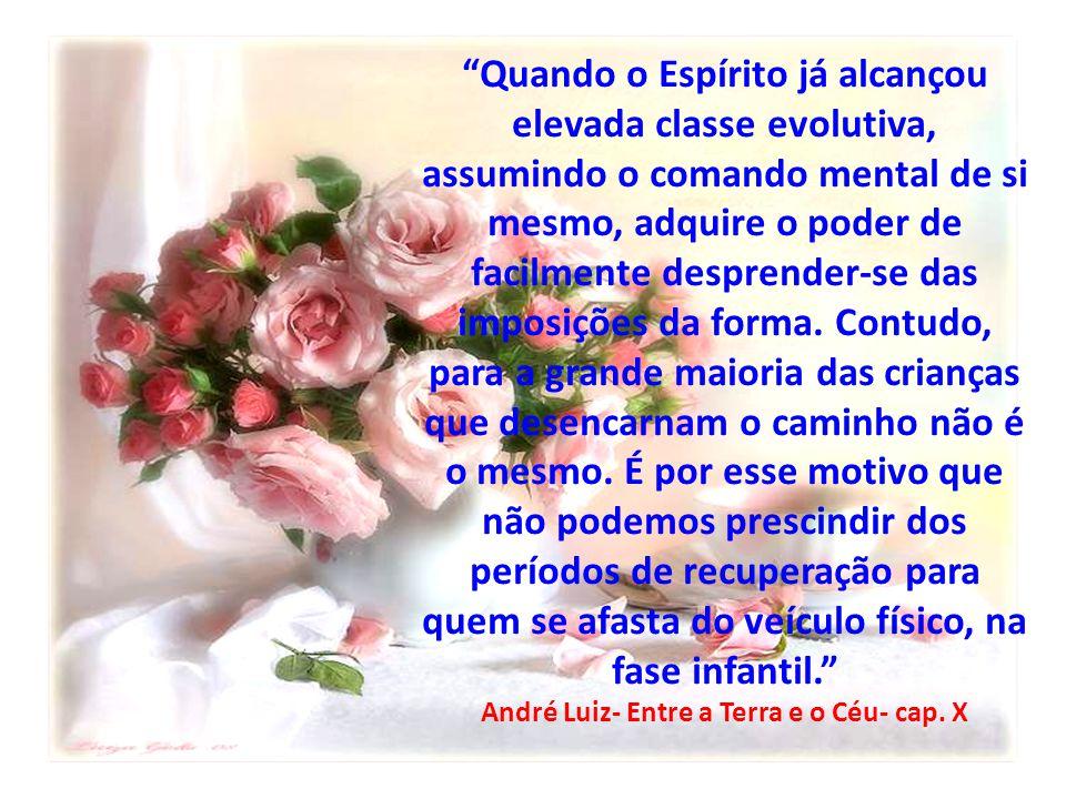 André Luiz- Entre a Terra e o Céu- cap. X