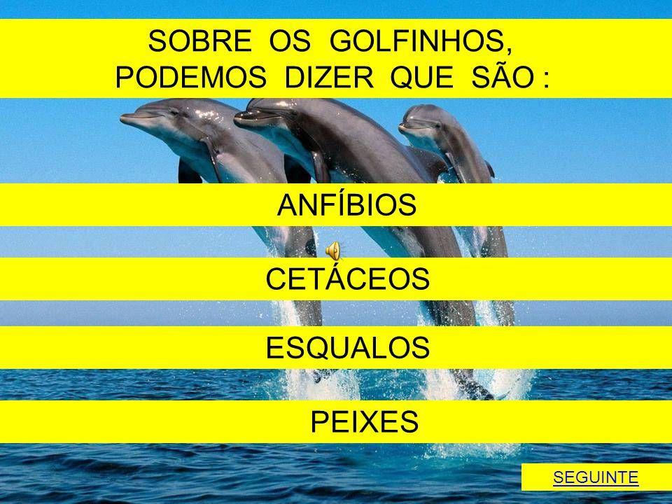 SOBRE OS GOLFINHOS, PODEMOS DIZER QUE SÃO : ANFÍBIOS CETÁCEOS ESQUALOS