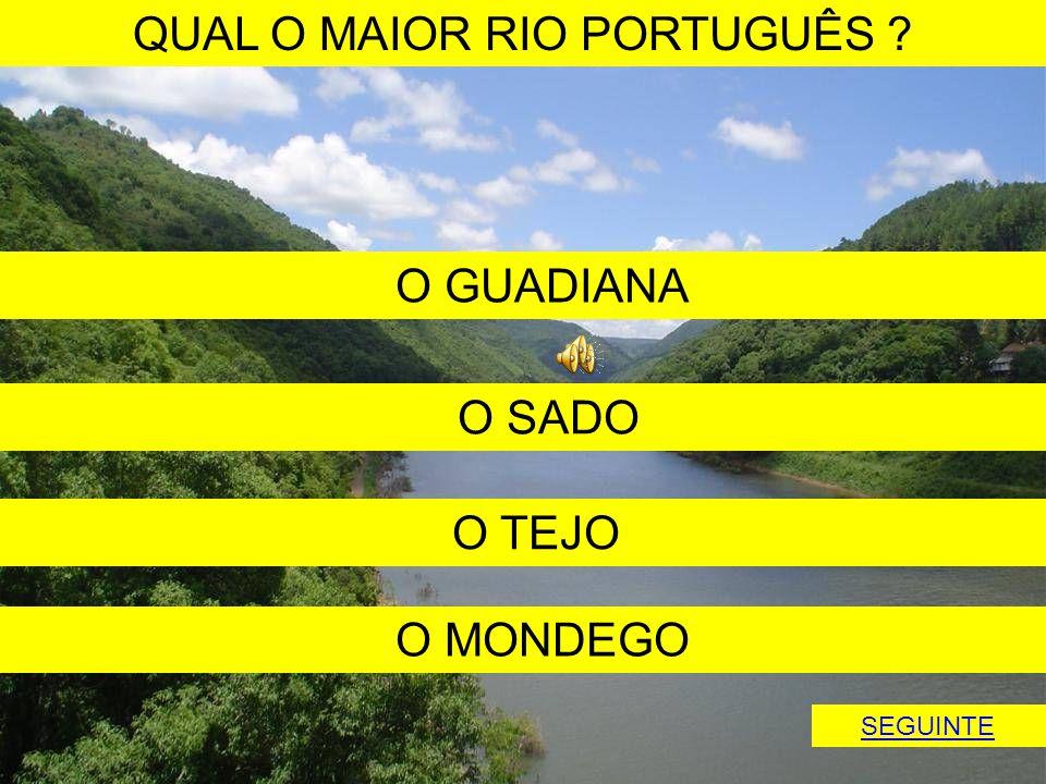 QUAL O MAIOR RIO PORTUGUÊS