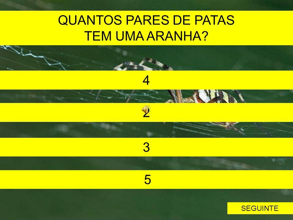 QUANTOS PARES DE PATAS TEM UMA ARANHA 4 2 3 5 SEGUINTE