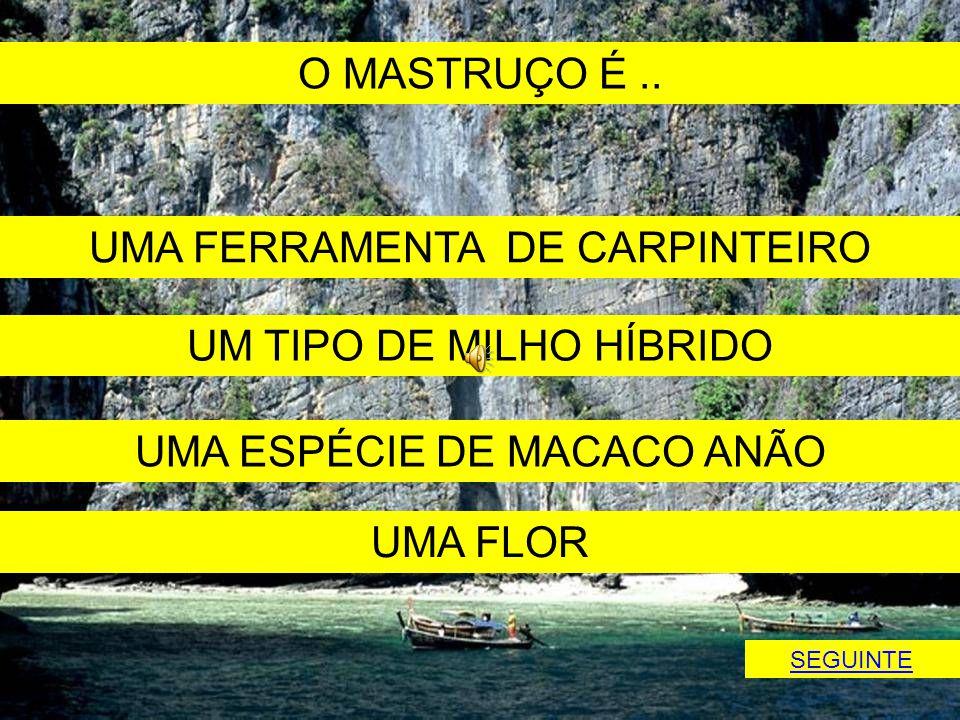 UMA FERRAMENTA DE CARPINTEIRO