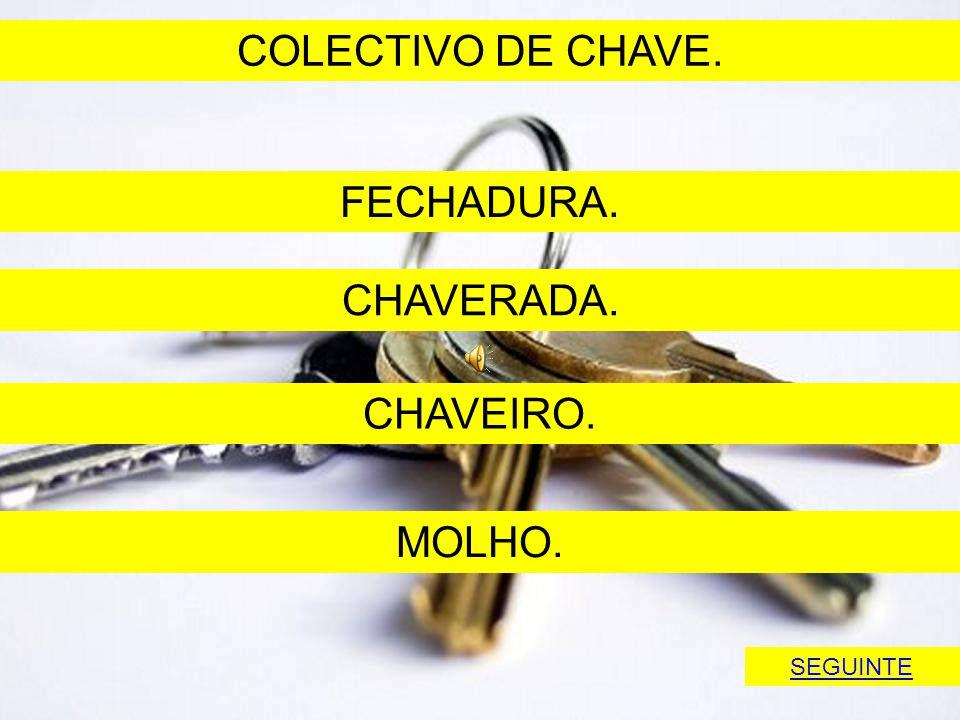 COLECTIVO DE CHAVE. FECHADURA. CHAVERADA. CHAVEIRO. MOLHO. SEGUINTE