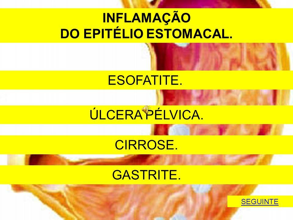 INFLAMAÇÃO DO EPITÉLIO ESTOMACAL.