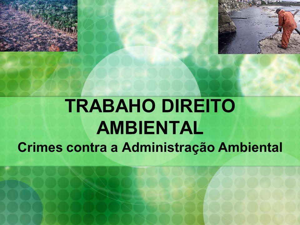 TRABAHO DIREITO AMBIENTAL