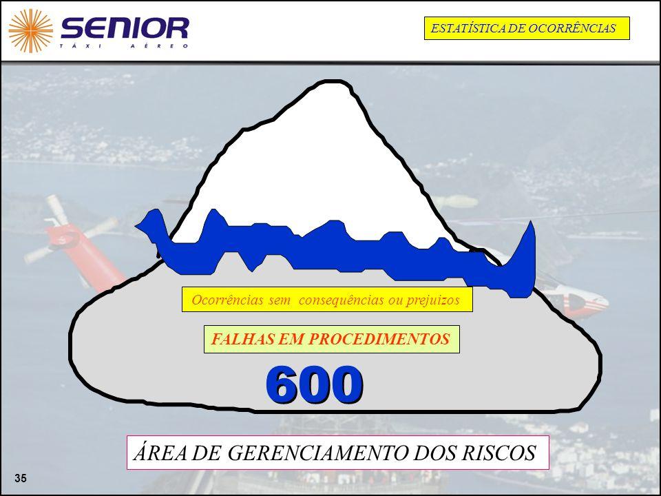 600 ÁREA DE GERENCIAMENTO DOS RISCOS FALHAS EM PROCEDIMENTOS