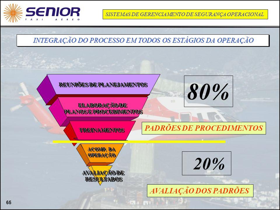 REUNIÕES DE PLANEJAMENTOS PLANOS E PROCEDIMENTOS