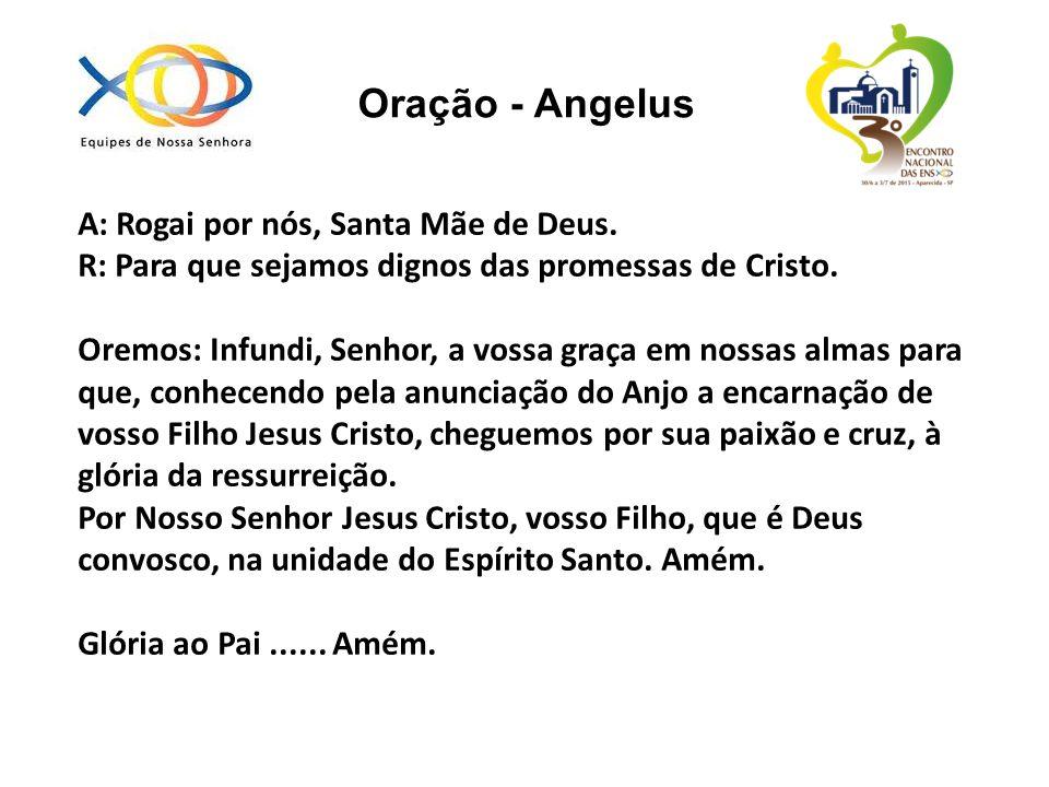 Oração - Angelus A: Rogai por nós, Santa Mãe de Deus.