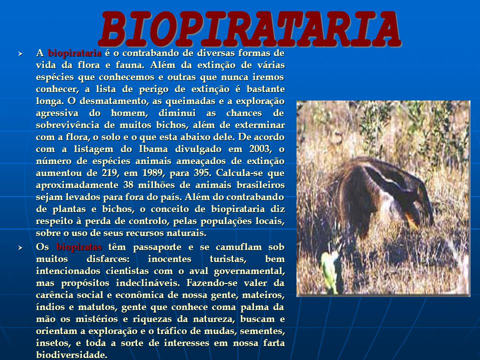 BIOPIRATARIA