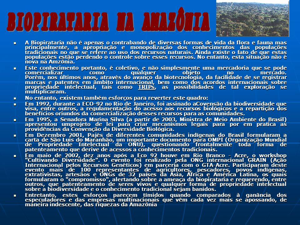 BIOPIRATARIA NA AMAZÔNIA