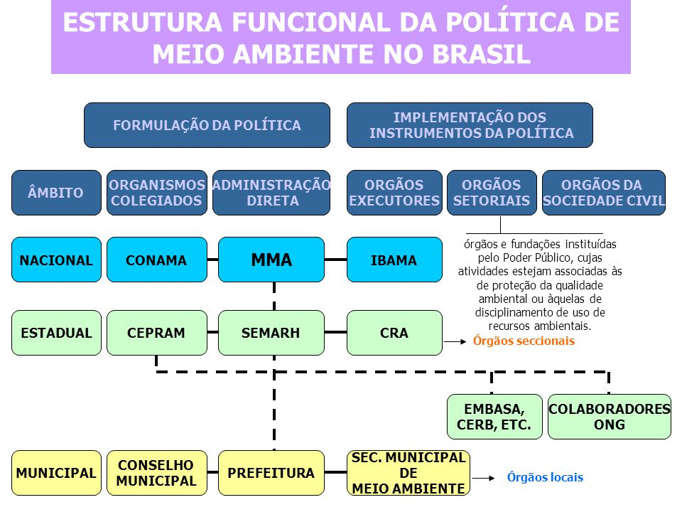 ESTRUTURA FUNCIONAL DA POLÍTICA DE MEIO AMBIENTE NO BRASIL