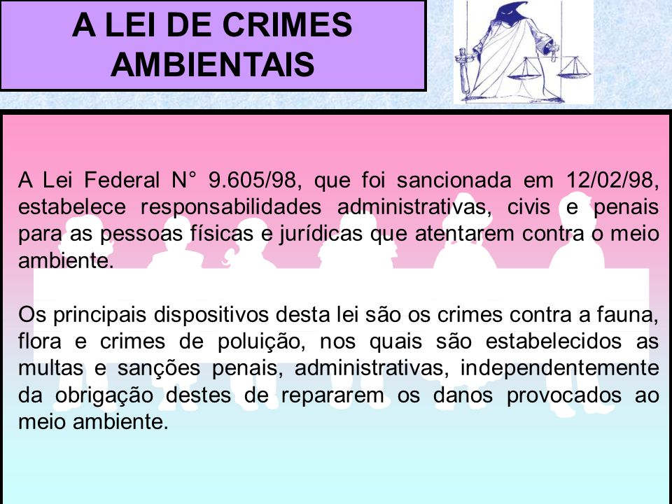 A LEI DE CRIMES AMBIENTAIS