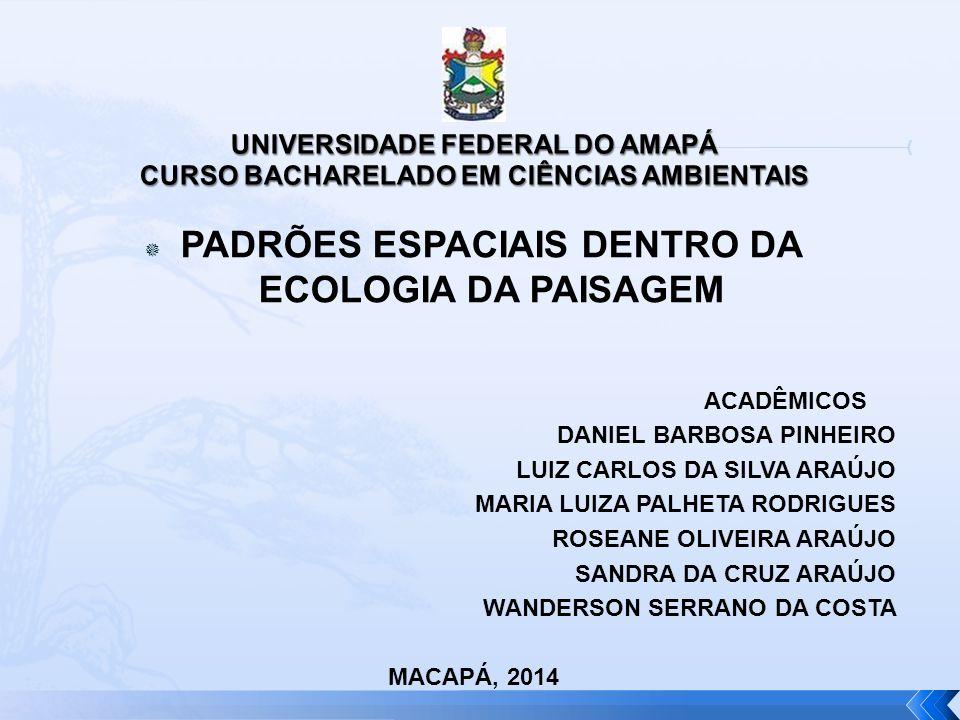 UNIVERSIDADE FEDERAL DO AMAPÁ CURSO BACHARELADO EM CIÊNCIAS AMBIENTAIS