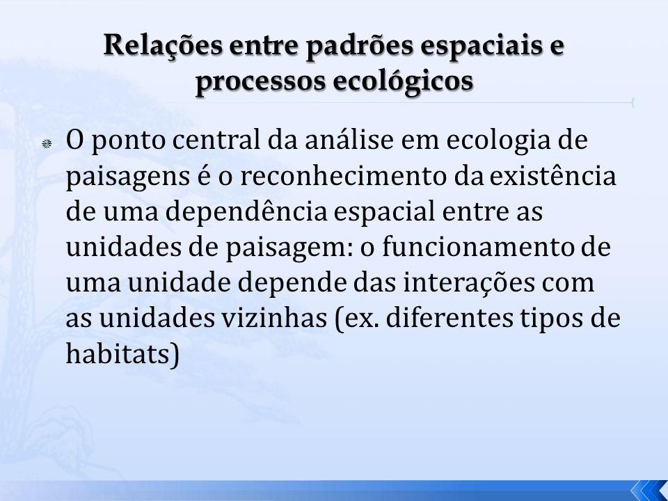 Relações entre padrões espaciais e processos ecológicos