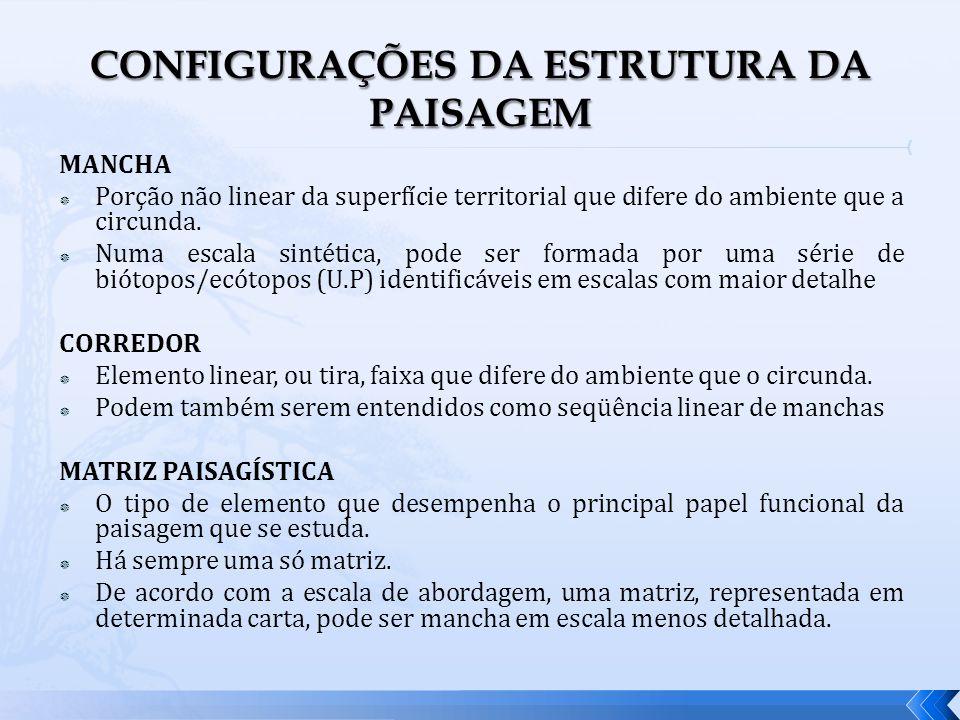 CONFIGURAÇÕES DA ESTRUTURA DA PAISAGEM