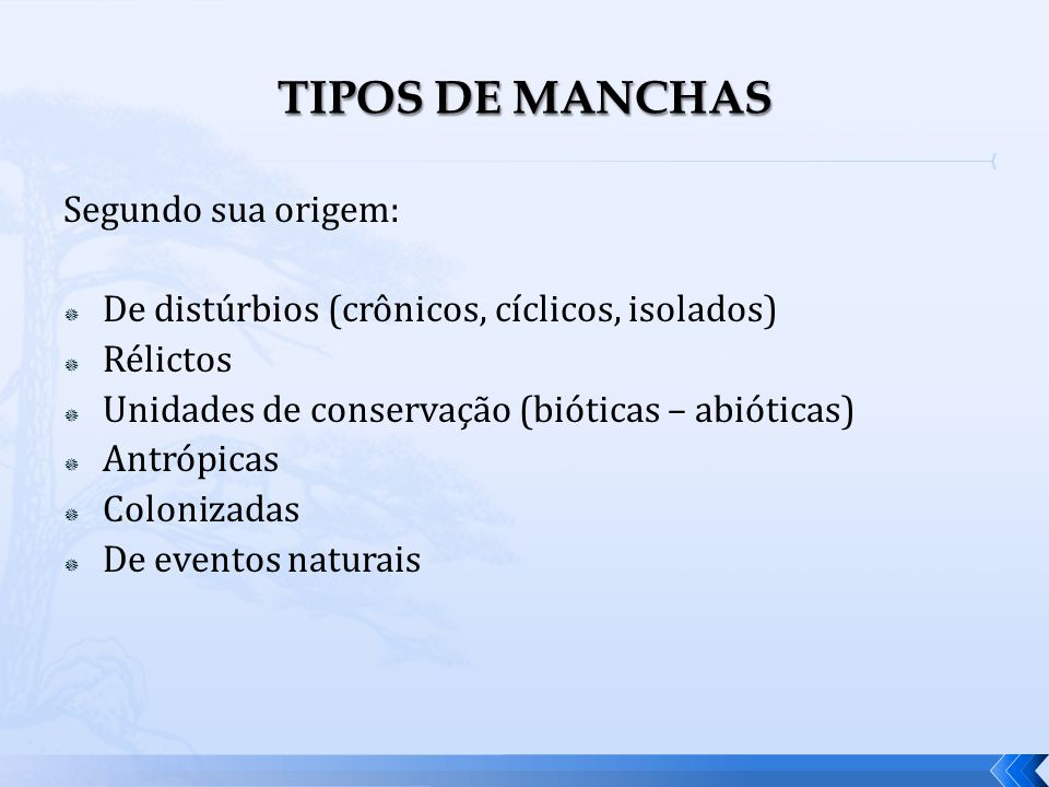 TIPOS DE MANCHAS Segundo sua origem: