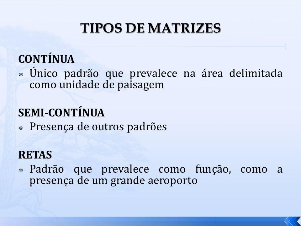 TIPOS DE MATRIZES CONTÍNUA