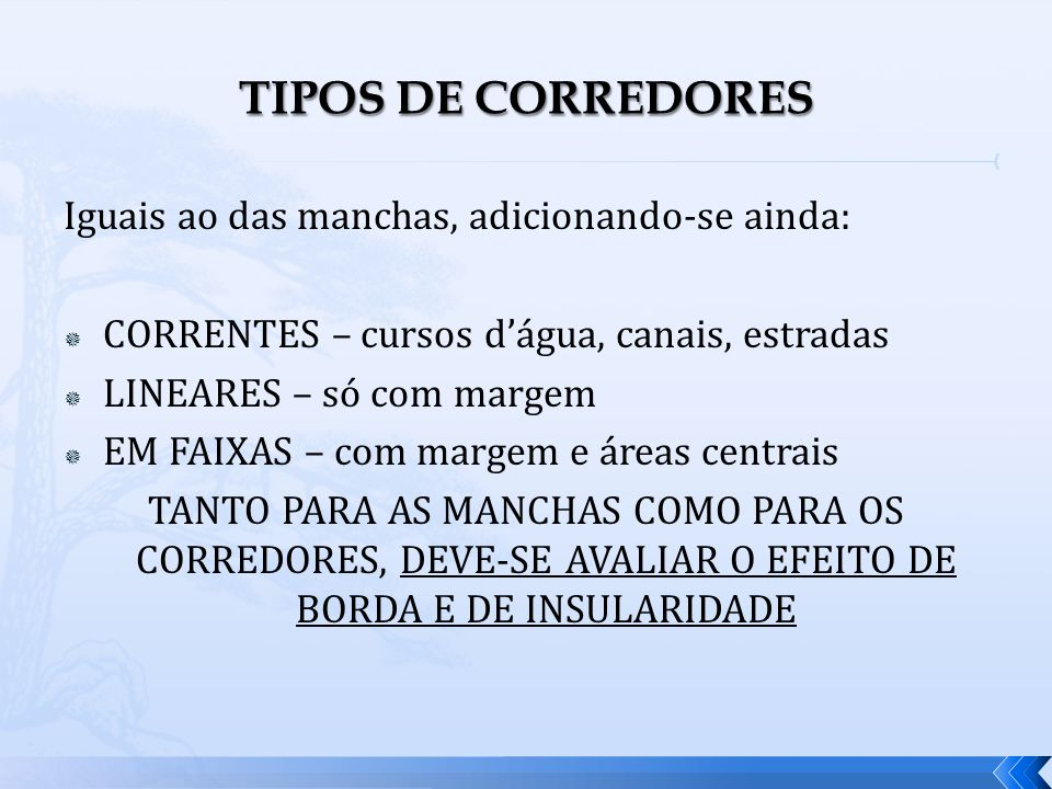TIPOS DE CORREDORES Iguais ao das manchas, adicionando-se ainda: