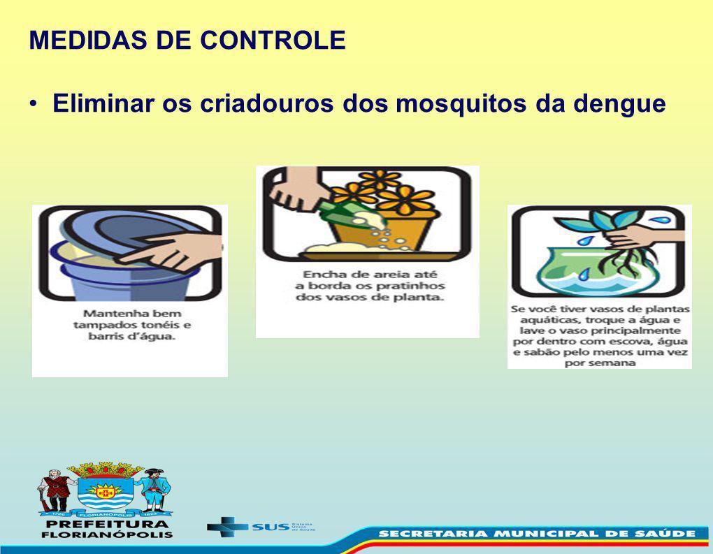 Eliminar os criadouros dos mosquitos da dengue
