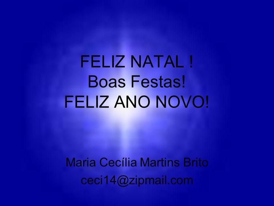 FELIZ NATAL ! Boas Festas! FELIZ ANO NOVO!