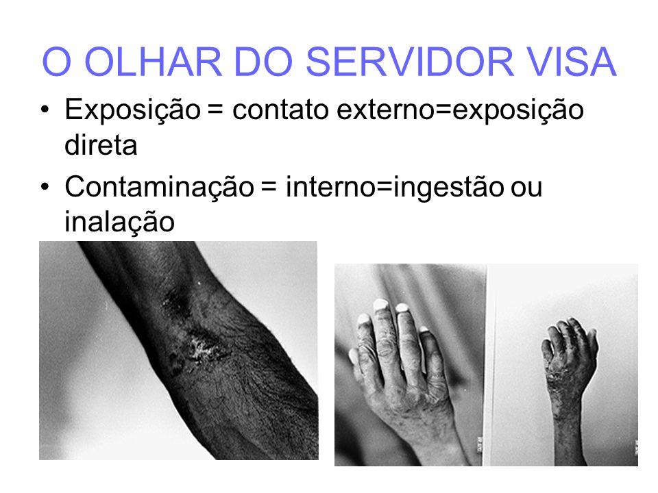 O OLHAR DO SERVIDOR VISA