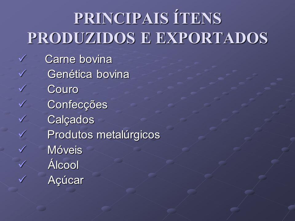 PRINCIPAIS ÍTENS PRODUZIDOS E EXPORTADOS