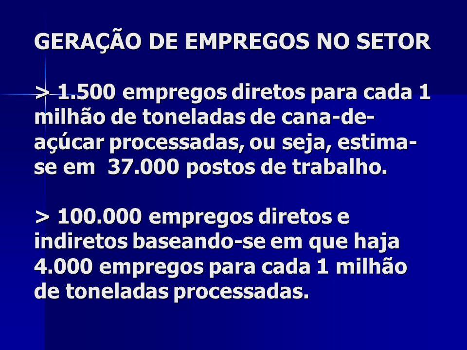 GERAÇÃO DE EMPREGOS NO SETOR > 1