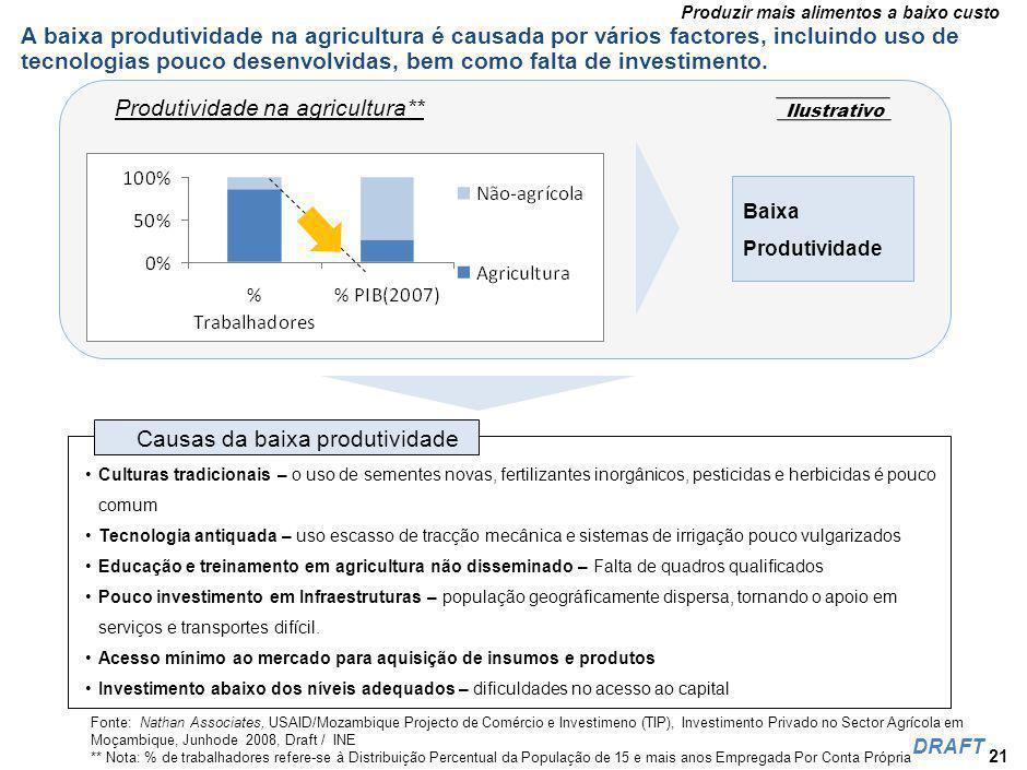O Investimento Estrangeiro na Agricultura tem sido inconsistente, inibindo esforços para encorajar o seu desenvolvimento e aproveitar bem o potencial do sector.