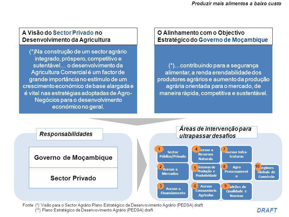As dimensões de um investimento efectivo no agro-negócio