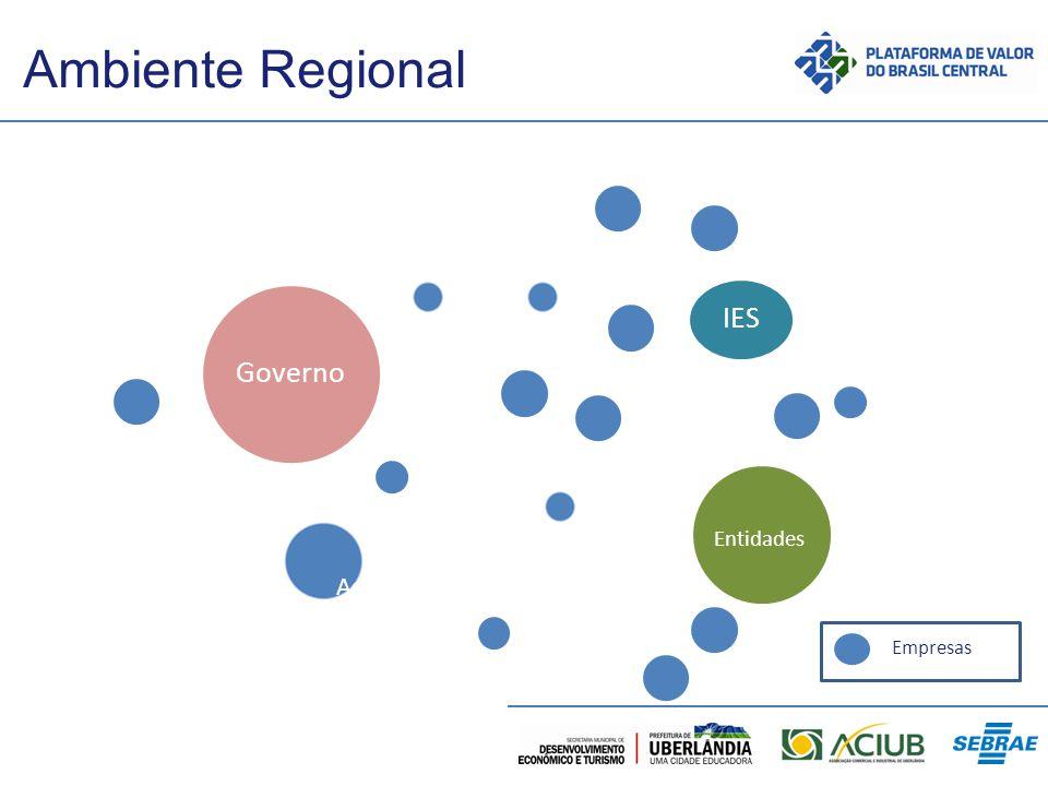 Ambiente Regional IES Governo Entidades Assoc. Empresas