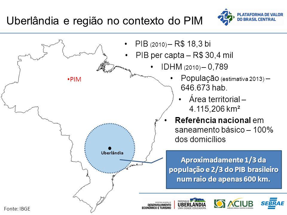 Uberlândia e região no contexto do PIM