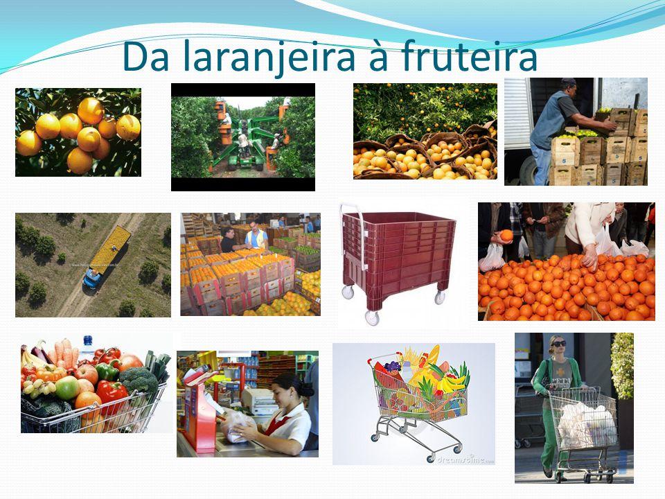 Da laranjeira à fruteira