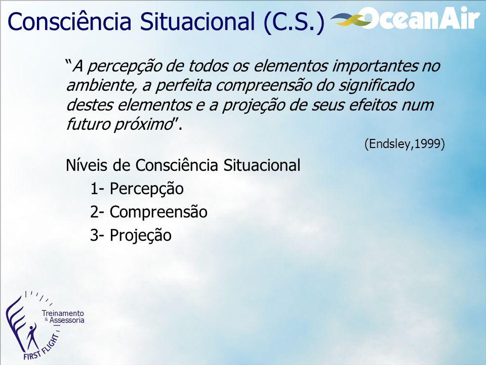 Consciência Situacional (C.S.)