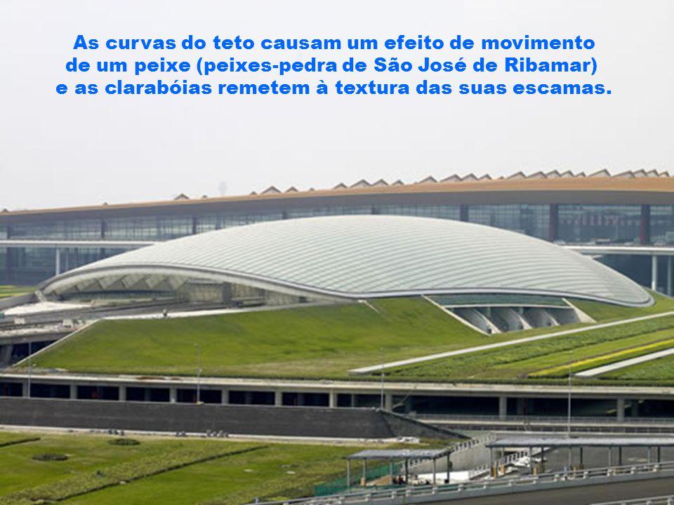As curvas do teto causam um efeito de movimento