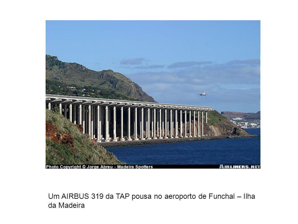 Um AIRBUS 319 da TAP pousa no aeroporto de Funchal – Ilha