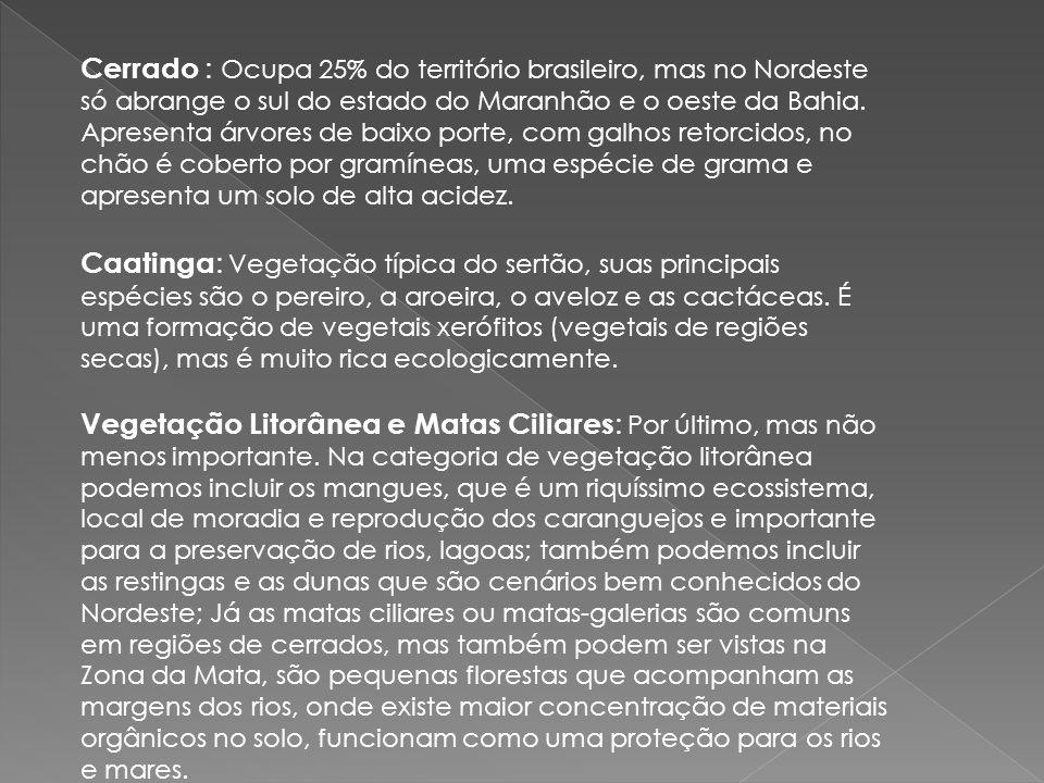Cerrado : Ocupa 25% do território brasileiro, mas no Nordeste só abrange o sul do estado do Maranhão e o oeste da Bahia. Apresenta árvores de baixo porte, com galhos retorcidos, no chão é coberto por gramíneas, uma espécie de grama e apresenta um solo de alta acidez.