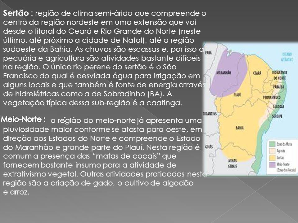 Sertão : região de clima semi-árido que compreende o centro da região nordeste em uma extensão que vai desde o litoral do Ceará e Rio Grande do Norte (neste último, até próximo a cidade de Natal), até a região sudoeste da Bahia. As chuvas são escassas e, por isso a pecuária e agricultura são atividades bastante difíceis na região. O único rio perene do sertão é o São Francisco do qual é desviada água para irrigação em alguns locais e que também é fonte de energia através de hidrelétricas como a de Sobradinho (BA). A vegetação típica dessa sub-região é a caatinga.