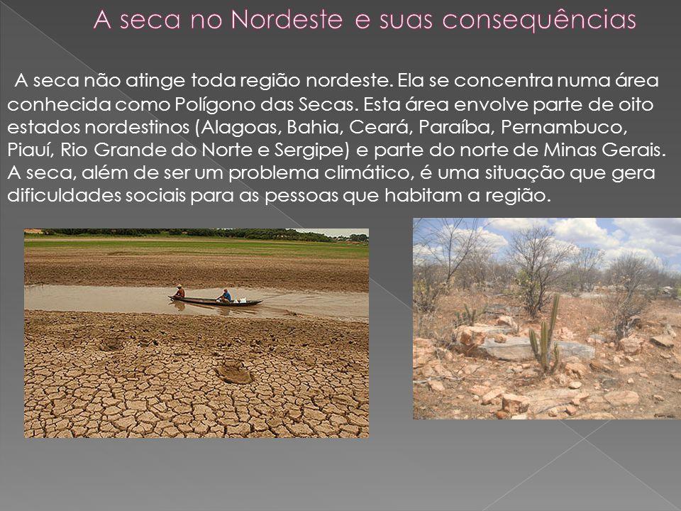 A seca no Nordeste e suas consequências