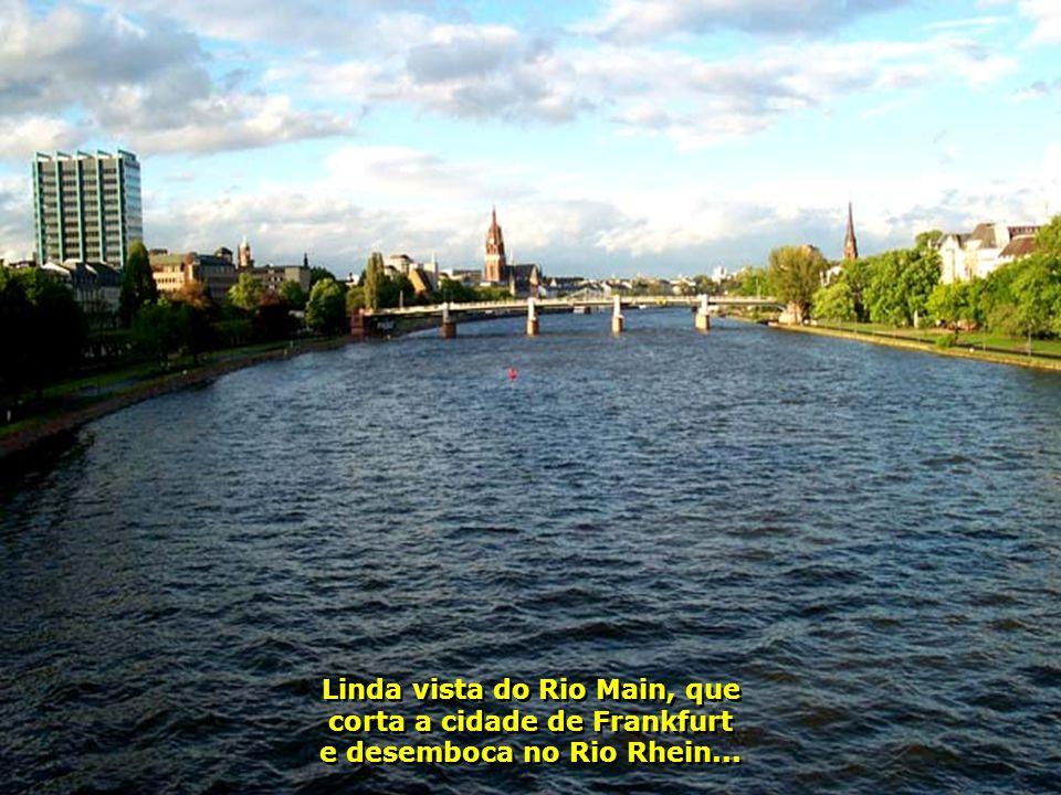 6182 Linda vista do Rio Main, que corta a cidade de Frankfurt e desemboca no Rio Rhein...