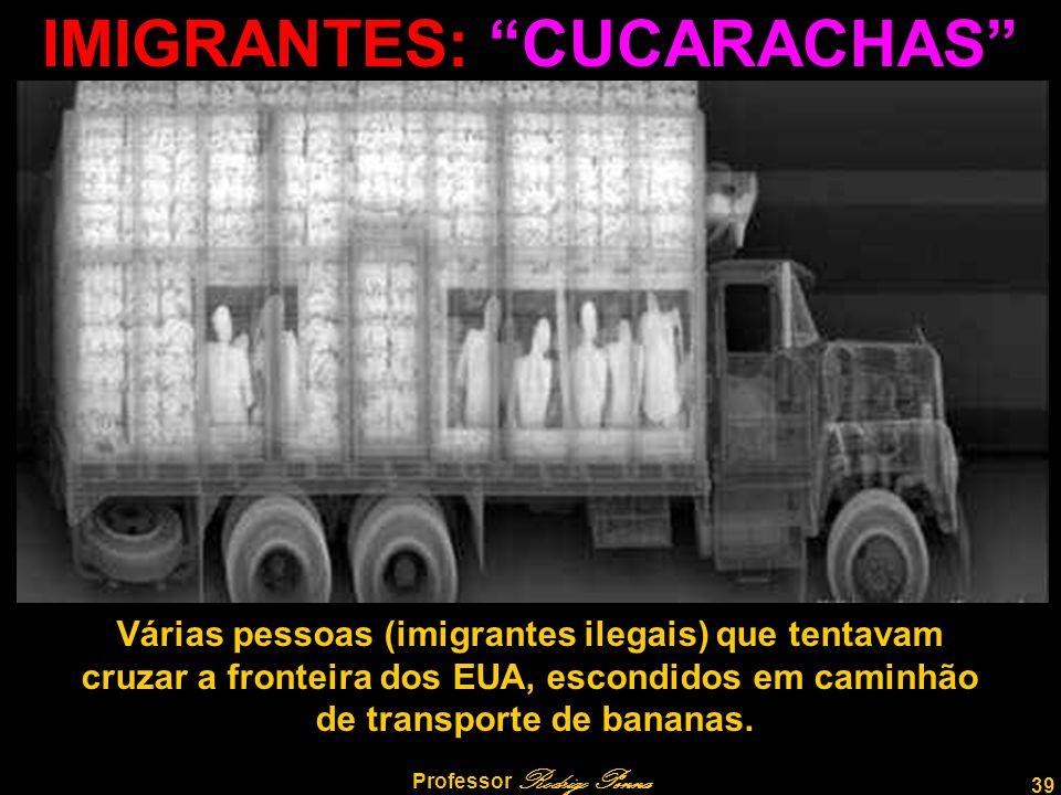 IMIGRANTES: CUCARACHAS