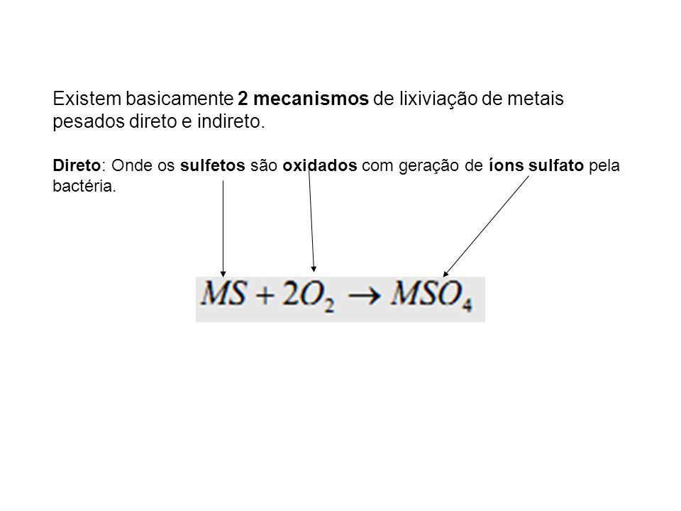 Existem basicamente 2 mecanismos de lixiviação de metais pesados direto e indireto.